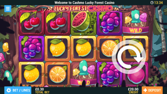 Lucky Forest Casino mobile slots screenshot at Cashmo mobile casino
